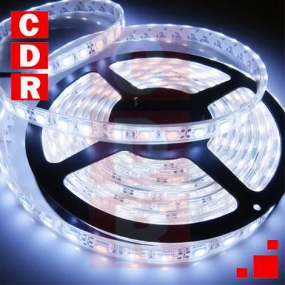 TIRA DE 60 LEDS BLANCO FRIO 3528 4.8W 12V EXTERIOR X ROLLO 5 MTS